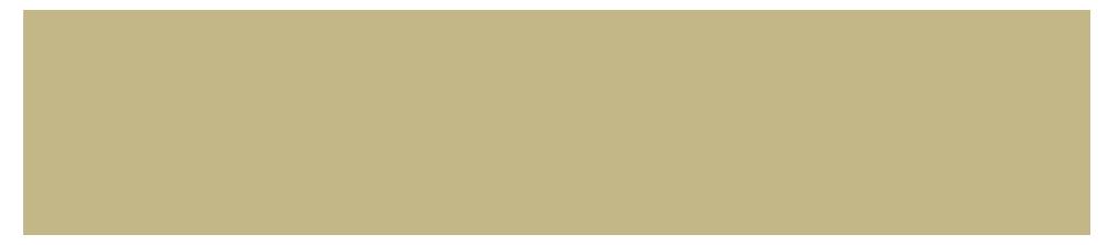 Century21 Goodwin (Commercial) Logo